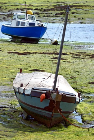 Boats moored sitting on mud during low tIde at Emsworth UK photo