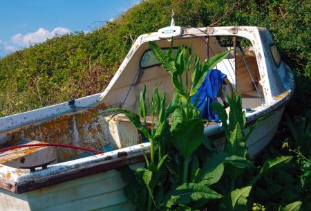 kimmeridge: Boat abandoned surrounded by shrubs at Kimmeridge UK Stock Photo