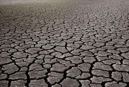 evaporarse: Barro seco  Foto de archivo