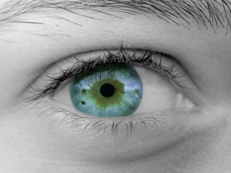 Female Eye Stock Photo - 365902