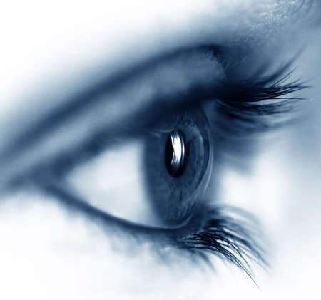 Closeup of a beautiful female eye Stock Photo - 365765