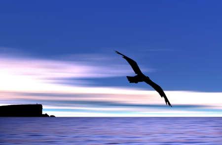 create: Gabbiano che vola in spiaggia (creato nel PS)  Archivio Fotografico