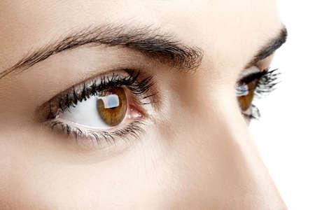 ojos marrones: Retrato de Close-up de un bellos ojos femenina Foto de archivo