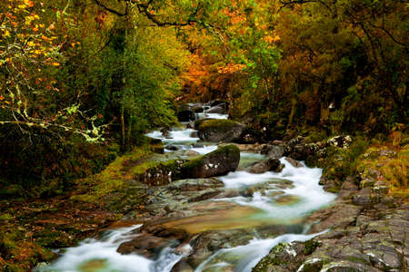Beautiful river flowing by the forest during the Autumn season Stock Photo - 7884516