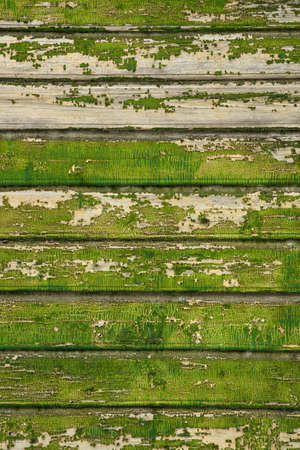 de madeira: Background picture made of old green wood boards Imagens