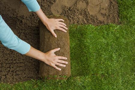 Woman applying turf rolls in the backyard
