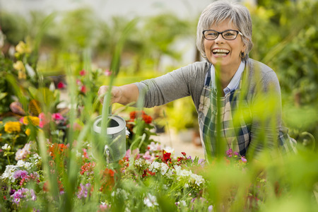 Beautiful mature woman in a garden watering flowers Imagens