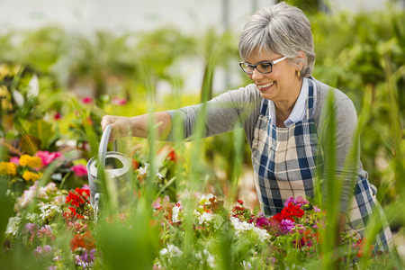 Beautiful mature woman in a garden watering flowers Archivio Fotografico
