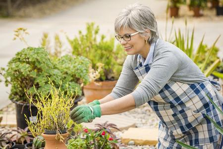 Beautiful mature woman taking care of the garden Stok Fotoğraf
