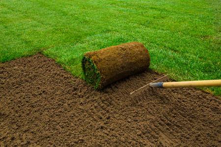 Gardener applying turf rolls in the backyard Stock Photo
