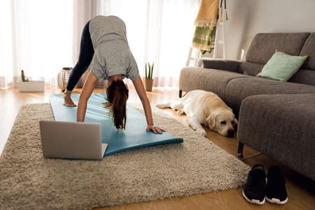 Shot of a woman doing exercise at home with her dog 스톡 콘텐츠