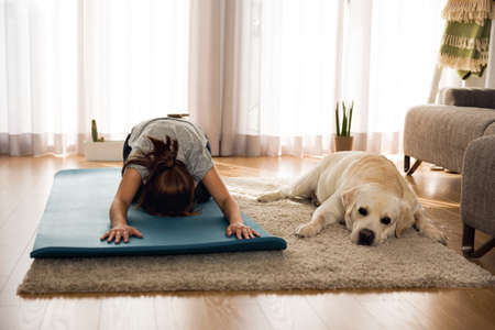 Shot of a woman doing exercise at home with her dog 版權商用圖片