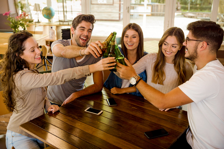 Group of friends hanging out and making a toast with beer