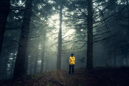 Female traveler enjoying the forest on a foggy morning
