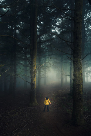 Female traveler walking in the middle of a forest on a foggy morning Imagens - 130027613