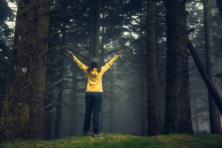 Female traveler with arms raised enjoying the forest on a foggy morning