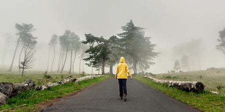 Female traveler walking on a beautiful road on a foggy morning Imagens - 130475575