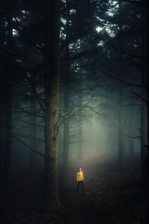 Female traveler walking in the middle of a forest on a foggy morning Imagens - 130475581