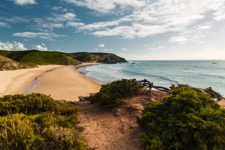 Beautiful desert beach from Portugal Imagens - 130544453
