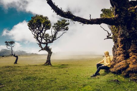 Woman resting near an Ancient tree and enjoying the view