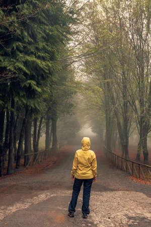 Female traveler walking on a beautiful road on a foggy morning