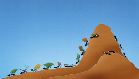 Group of ants carrying items uphill