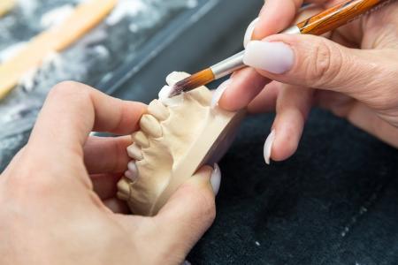 articulator: Dental technician applying ceramics to a mold Stock Photo