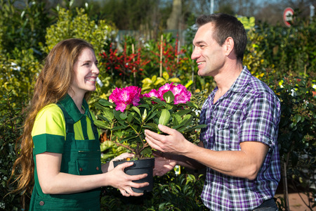 floriculture: Female florist hands flower to customer in nursery or market garden