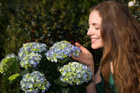 Woman smelling at hydrangea flower in nursery photo