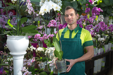 Florist in flower shop posing with an orchid photo
