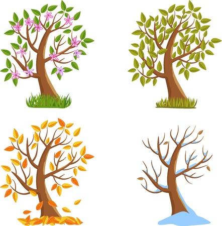 Spring, Summer, Autumn and Winter Tree Illustration.