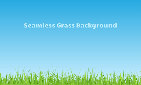 garden landscape: Horizontal seamless green grass background with curved leaves