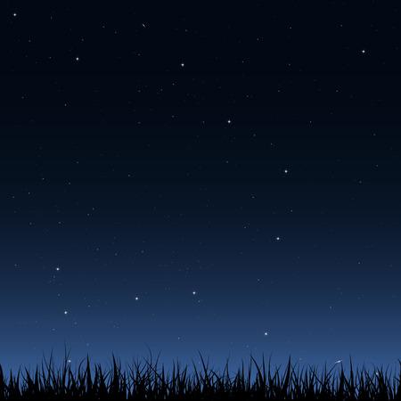 Horizontal imagen de vectores sin fisuras. Negro silueta de la hierba bajo el cielo de la noche con un montón de estrellas y galaxias.
