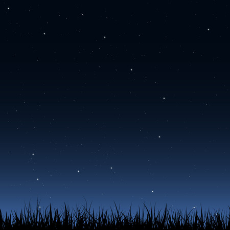 Horizontal seamless vector image. Black silhouette of grass under the night sky with a lot of stars and galaxies. Illustration