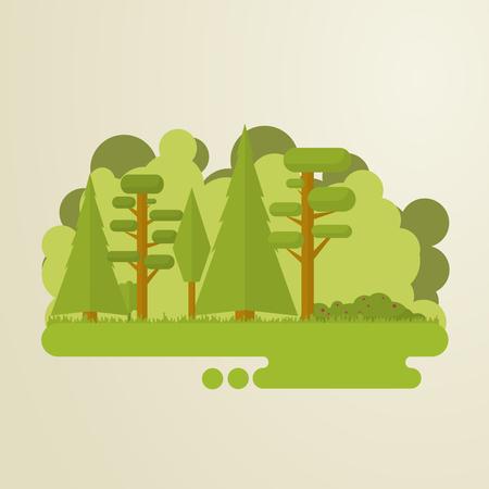 Satz von flachen Bäumen in einem Wald. Woods, Gras, Gebüsch, Kieferbaum.