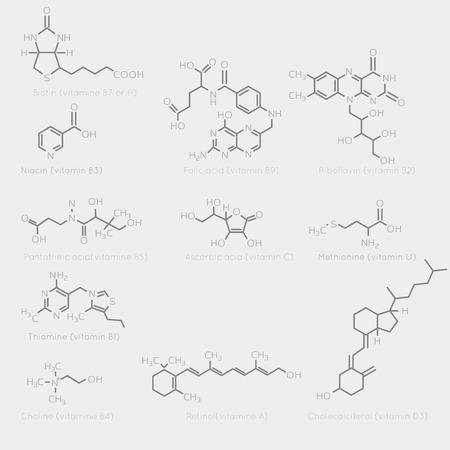 nutrientes: F�rmulas esquel�ticas de algunas vitaminas. Imagen esquem�tica de qu�micos org�nicos, mol�culas nutrientes. Vectores