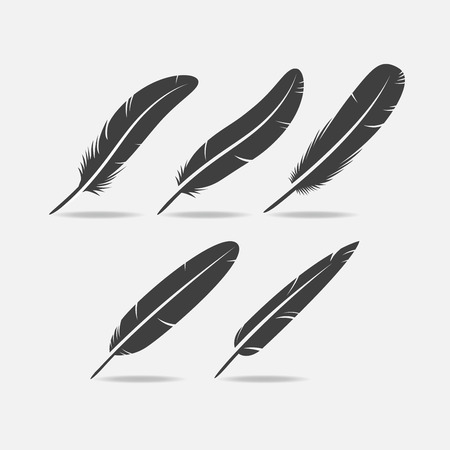 slits: Five black bird feather icon silhouette with slits. Illustration