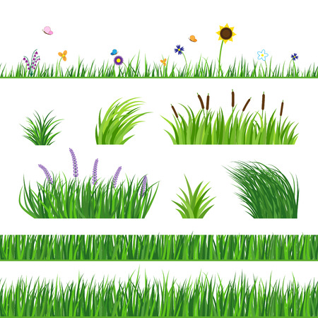 lawn: Green seamless grass elemnts. Lawn grass, reed and sunflower. Flying butterflies and flowers. Horizontal seamless elements.