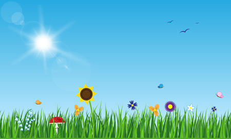 Sun with rays and flares on blue sky. Green grass lawn with flowers butterflies, mushroom and birds.