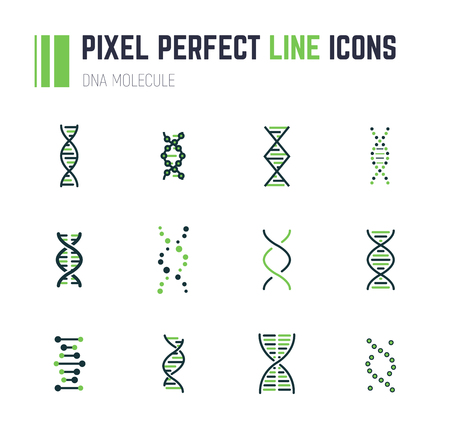 Set of 12 line style DNA molecule icons. Double helix molecule. Linear flat vector illustration. Biotech icons, medecine or science logo. Genetics sign.