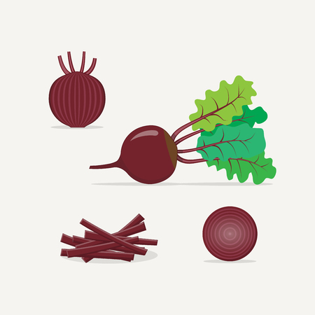 Purple beet flat realistic style vector illustration. Whole and cut in half the length and breadth of the plant. Chopped straw for salad or cooking.