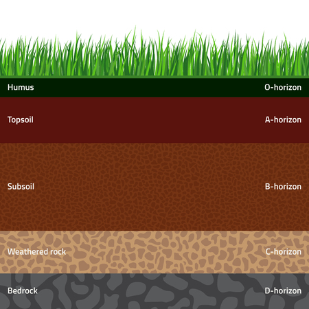 Seamless named soil layers with green grass on top. The stratum of organic, minerals, sand, clay, silt, parent rock and unweathered parent material. Illustration