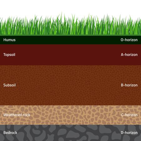 Strati di suolo denominati senza cuciture con erba verde sulla cima. Lo strato di organico, minerali, sabbia, argilla, limo, roccia madre e materiale genitore non rivestito.