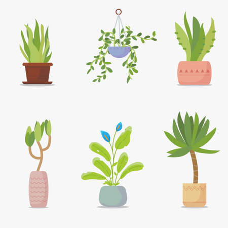 Set of green house plants. Green plants in flowerpot. Big green leaf and home garden set of flowers. Home interior decoration with plants. Иллюстрация