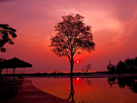 silhouette Sunrise
