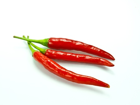 red hot chili  on a white background