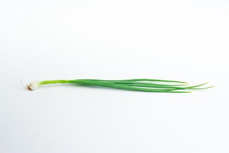 cebolla blanca: cebolla de primavera en el fondo blanco