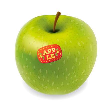 Green apple vector isolated on white Stock Vector - 17712618