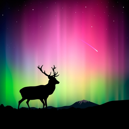 northern light: Northern lights with a deer in the foreground Illustration