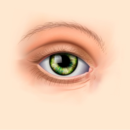 cosmetic surgery: Woman green eye close up